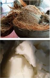 石鹸素地の原料ココナッツ油
